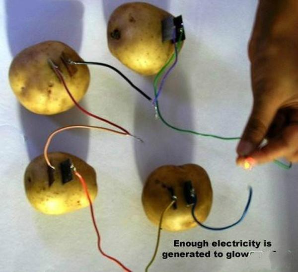 科技小制作 diy土豆电池